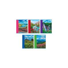 """Комплект тетрадей """"Гармония природы"""" (10 шт), 48 листов, Канц-Эксмо"""
