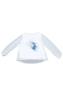 Блуза Dodipetto