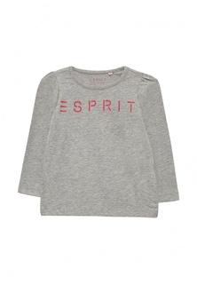 Лонгслив Esprit