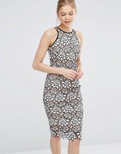 Кружевное платье-футляр Coast Ritvina - Черный