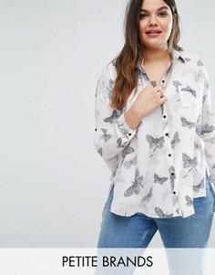Рубашка с принтом бабочек Koko Plus - Бежевый