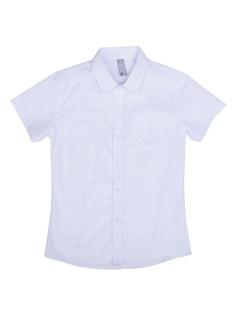 Рубашки S`Cool