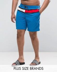 Синие шорты для плавания с флагом Tommy Hilfiger PLUS - Синий