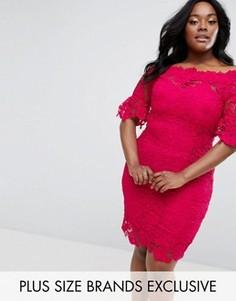 Платье кроше с открытыми плечами Paper Dolls Plus - Розовый