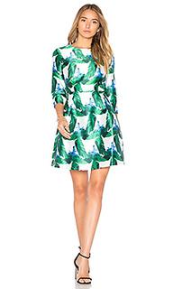 Приталенное и клешное платье - BLAQUE LABEL