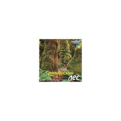 "CD ""Тропический лес"" Би Смарт"