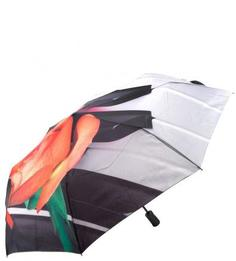 Автоматический зонт с уникальным каркасом из анодированной стали Flioraj