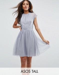 Платье мини для выпускного из тюля и кружева ASOS TALL PREMIUM - Серый