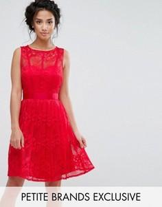 Короткое приталенное платье из кружева с плиссированной юбкой Little Mistress Petite - Красный
