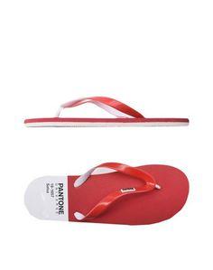 Вьетнамки Pantone Universe Footwear