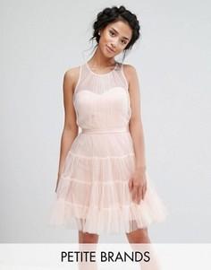 Тюлевое ярусное платье мини для выпускного Little Mistress Petite - Розовый