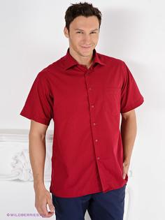 Рубашки Davani