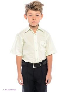 Рубашки Avanti Piccolo