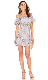 Printed off the shoulder fit & flared dress - Endless Rose