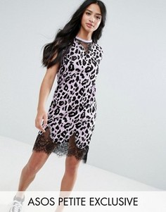 Платье-футболка без рукавов с леопардовым принтом и кружевными вставками ASOS PETITE - Розовый