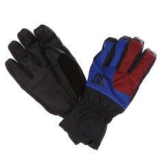 Перчатки сноубордические DC Seger Glove Surf The Web