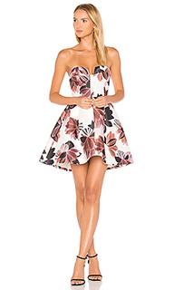 Платье divide - keepsake