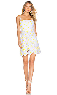 Petal lace dress - MILLY