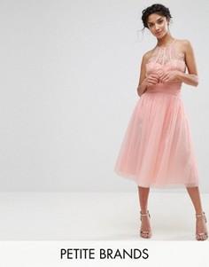 Юбка для выпускного из тюля с завышенной талией Little Mistress Petite - Розовый