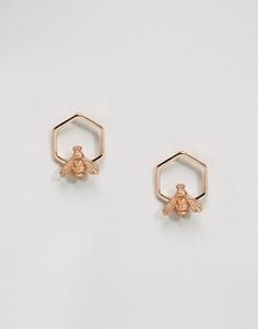 Покрытые розовым золотом серьги с шестиугольником и пчелой Bill Skinner - Золотой