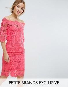 Кружевное платье-футляр с широкой горловиной Paper Dolls Petite - Розовый