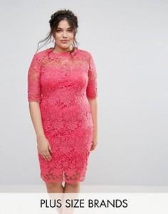 Кружевное платье‑футляр Paper Dolls Plus - Розовый