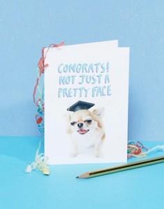 Поздравительная открытка для выпускника с надписью Congrats Jolly Awesome - Мульти