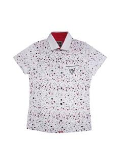 Рубашки CEGISA