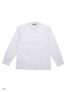 Рубашки CARAT.
