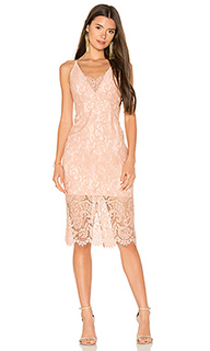 Pencil lace midi dress - Bardot