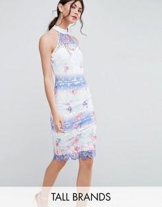 Кружевное платье-футляр с высоким воротом Paper Dolls Tall - Мульти