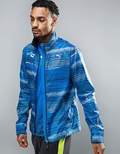 Синяя ветровка Puma PR 51264591 - Синий
