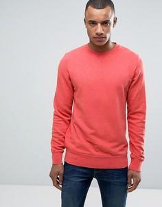 Классический свитшот с круглым вырезом Esprit - Красный