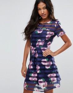 Короткое приталенное платье с прозрачной сеточкой AX Paris - Темно-синий