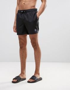 Черные шорты для плавания с логотипом в виде чайки Hollister - Черный