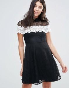 Черно-белое короткое приталенное кружевное платье Jessica Wright - Черный