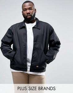 Спортивная куртка Dickies PLUS - Черный