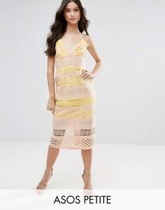 Кружевное платье-футляр миди ASOS PETITE Hitchcock - Мульти