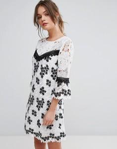Черно-белое кружевное платье Miss Selfridge - Мульти