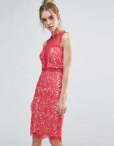 Кружевное облегающее платье Little Mistress - Оранжевый