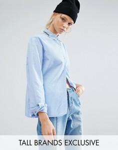 Рубашка в полоску с вышивкой на воротнике Daisy Street Tall - Синий
