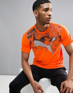 Футболка Puma Essential Pure Tech - Оранжевый