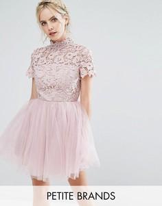 Платье мини с кружевным топом и тюлевой юбкой Chi Chi London Petite - Розовый