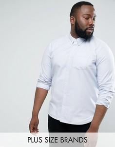 Хлопковая оксфордская рубашка с длинными рукавами D-Struct PLUS - Синий