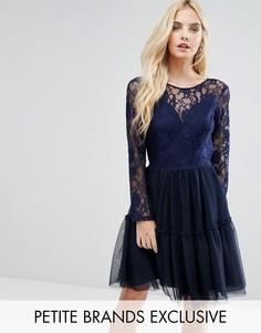 Платье мини для выпускного с кружевным топом и юбкой из тюля John Zack Petite - Темно-синий