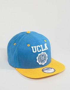 Бейсболка UCLA Byers - Синий