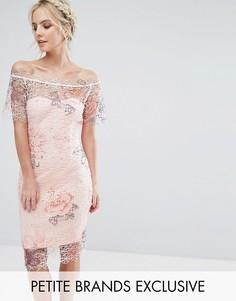 Кружевное платье-футляр с широким вырезом и цветочным принтом Paper Dolls Petite - Мульти