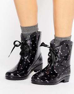 Резиновые сапоги в черный горошек на шнуровке Glamorous - Черный