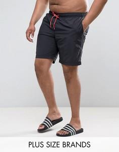 Черные шорты для плавания с маленьким логотипом Tommy Hilfiger PLUS - Черный