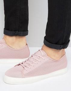Розовые сетчатые кеды на шнуровке ASOS - Розовый
